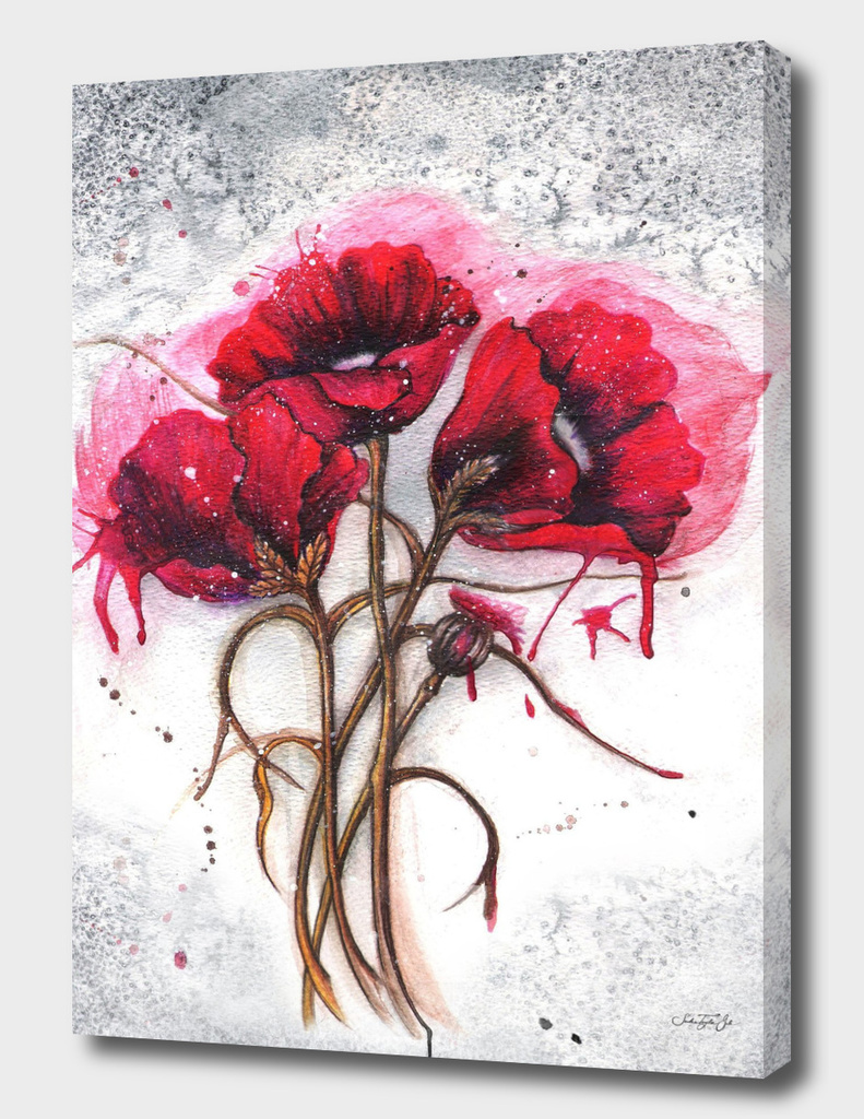 Lisa's Red Poppies