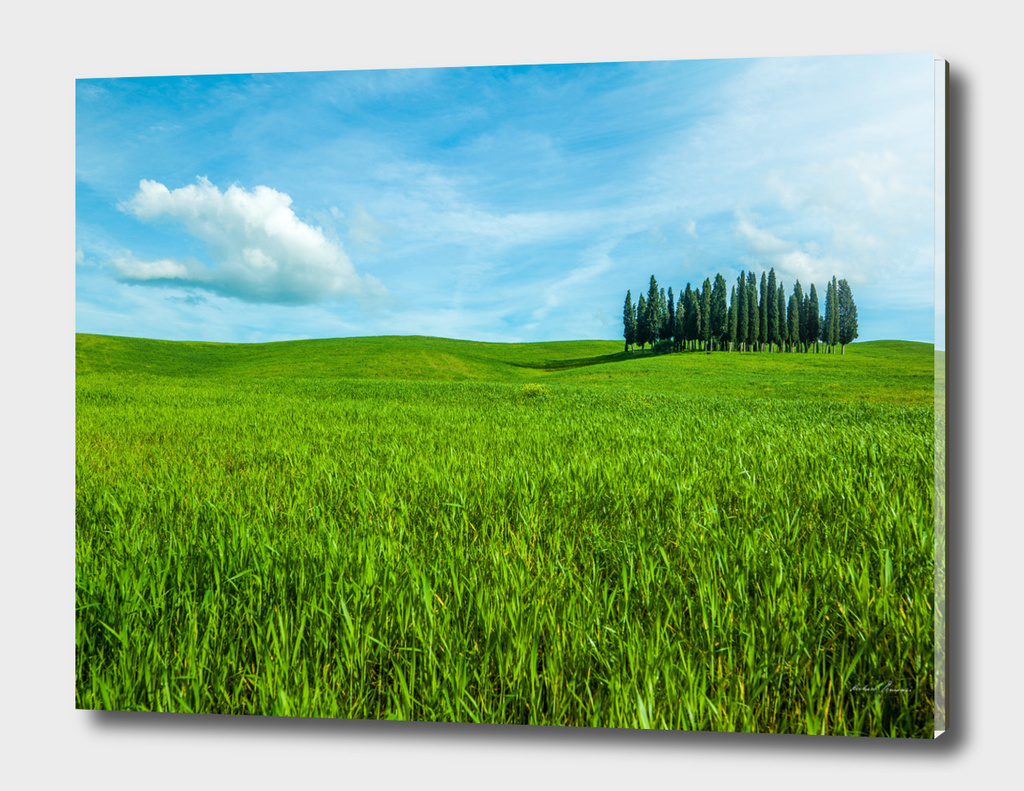 RDP-99003 VAL D'ORCIA # 2