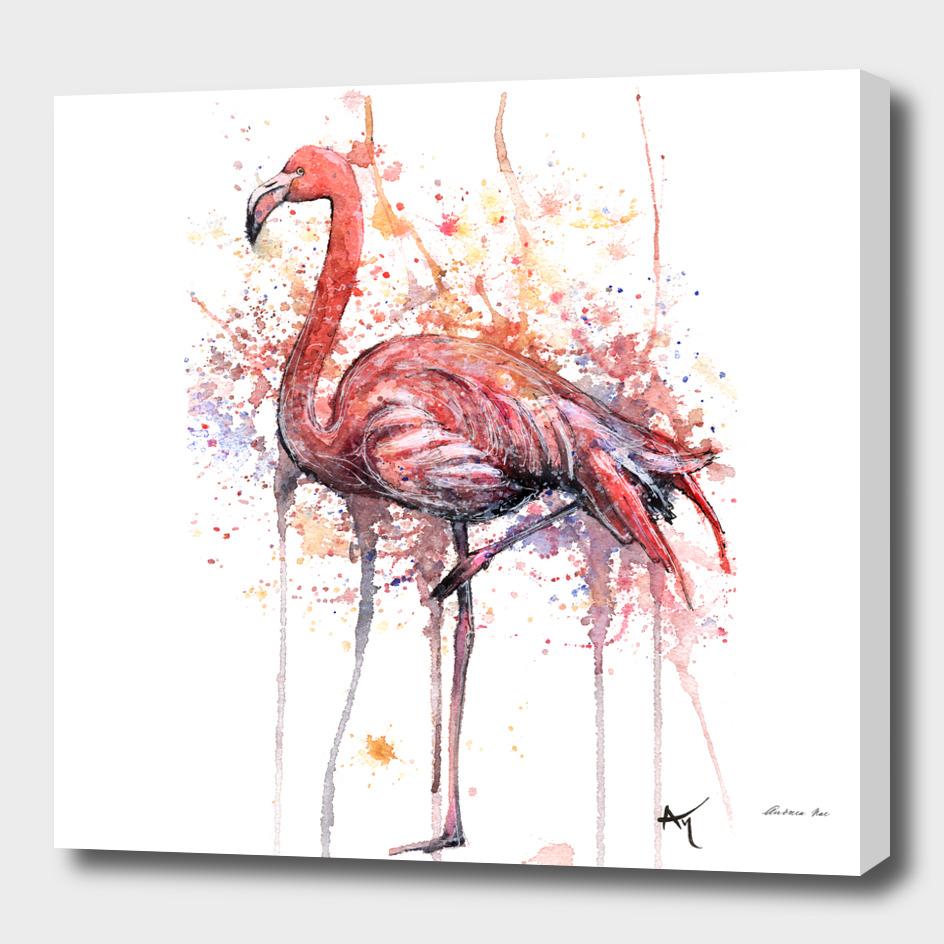 Flamingo - Wildlife Collection