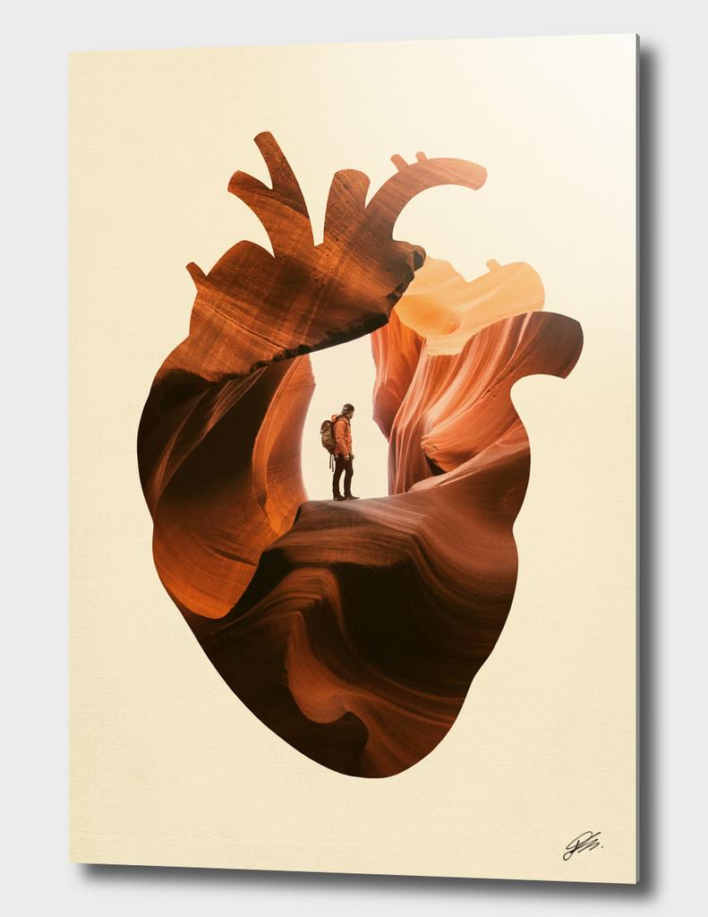 Heart Explorer