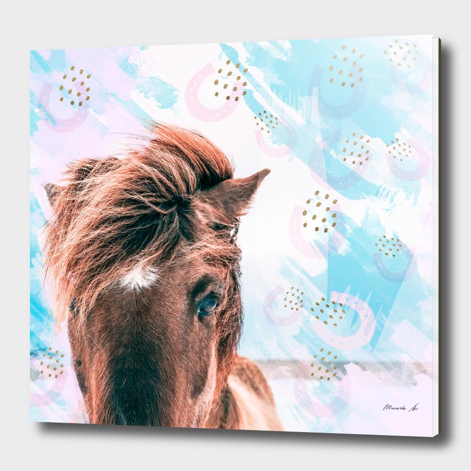 horse horseshoes