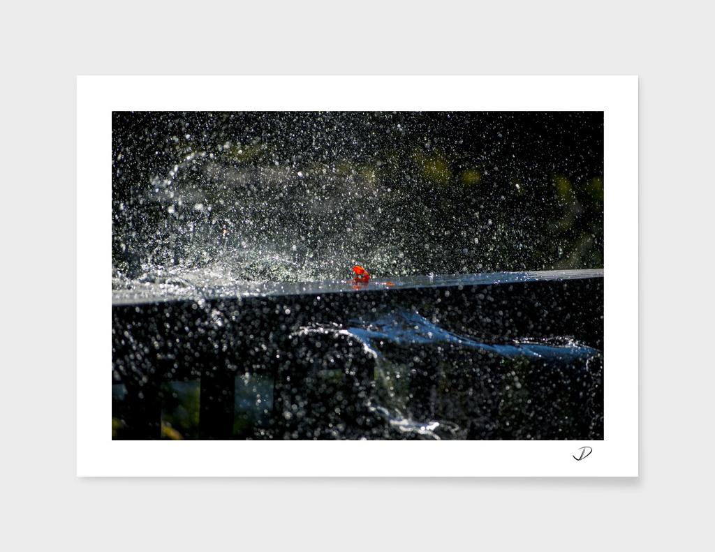 A Splash