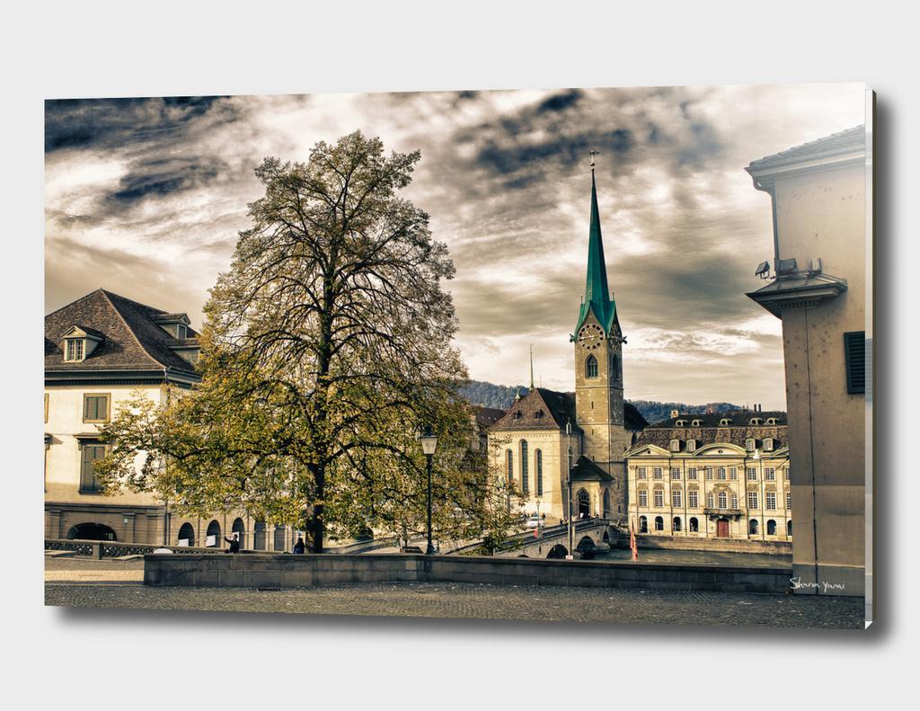 Zurich switzerland old town scenery with tree and clocktower