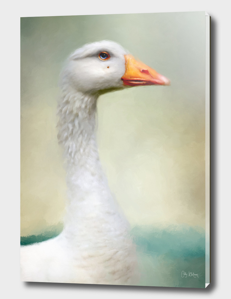 Goose with Beauty Spot