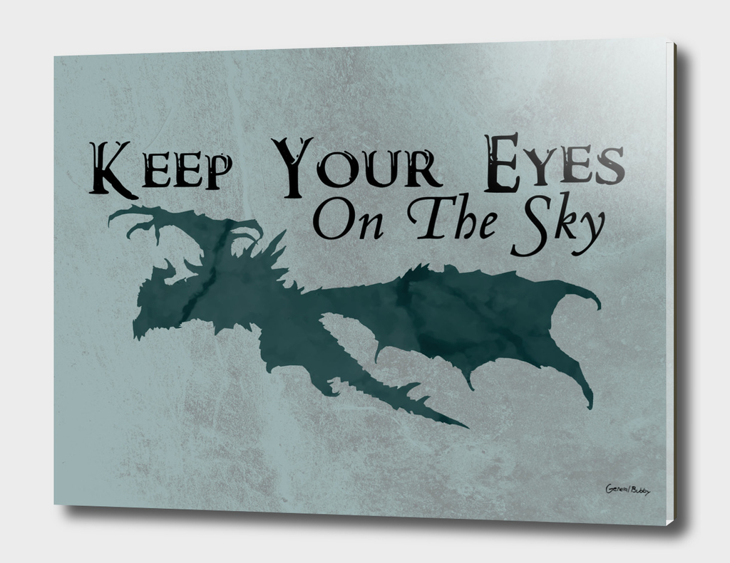 Keep Your Eye's On The Sky