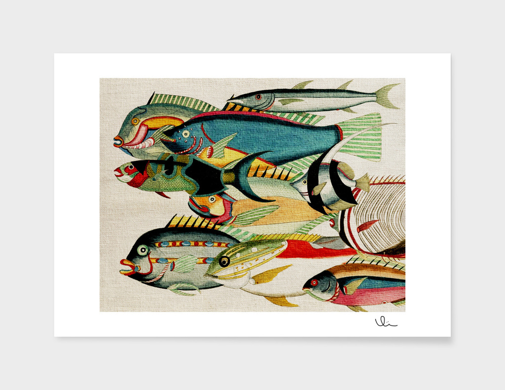 Fantastic Fish Tank