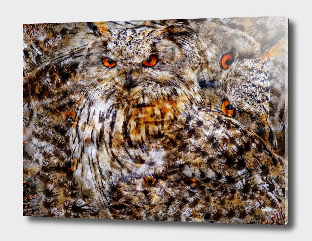 Western Siberian Eagle Owl