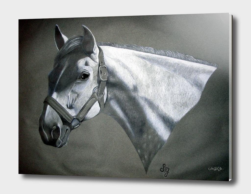 Grey On Gray