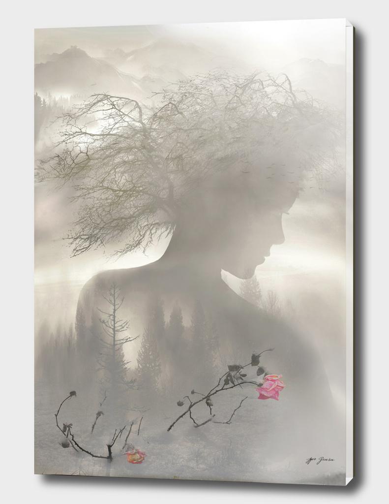 Dreaming Spirit