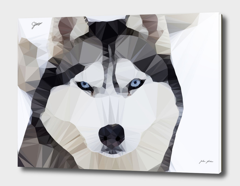 Low Poly siberian  husky