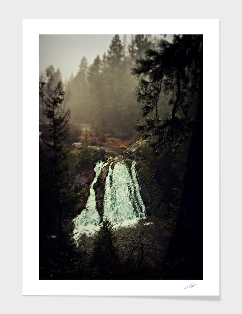 Douglas Falls Tree Framed