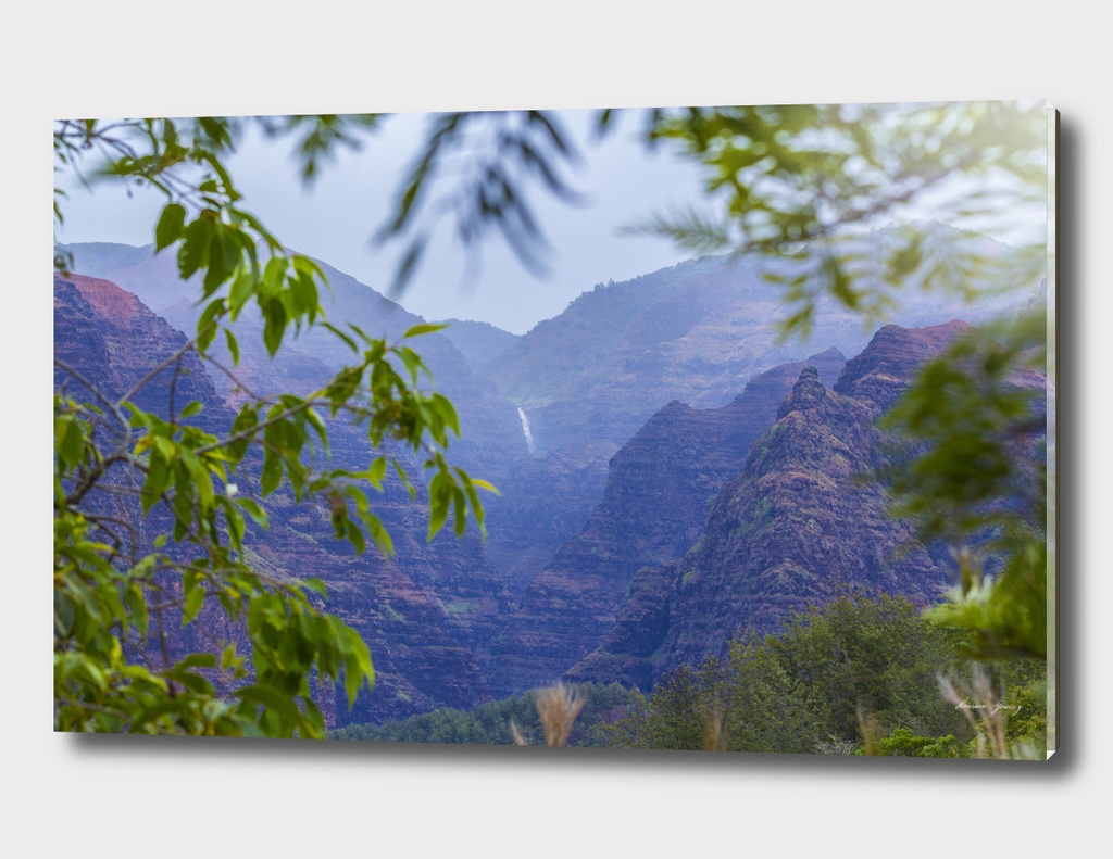 Waimea canyon  Hiwaii