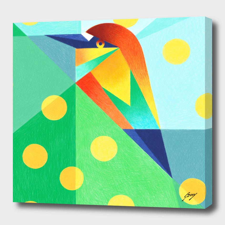 Rainbow_Bird