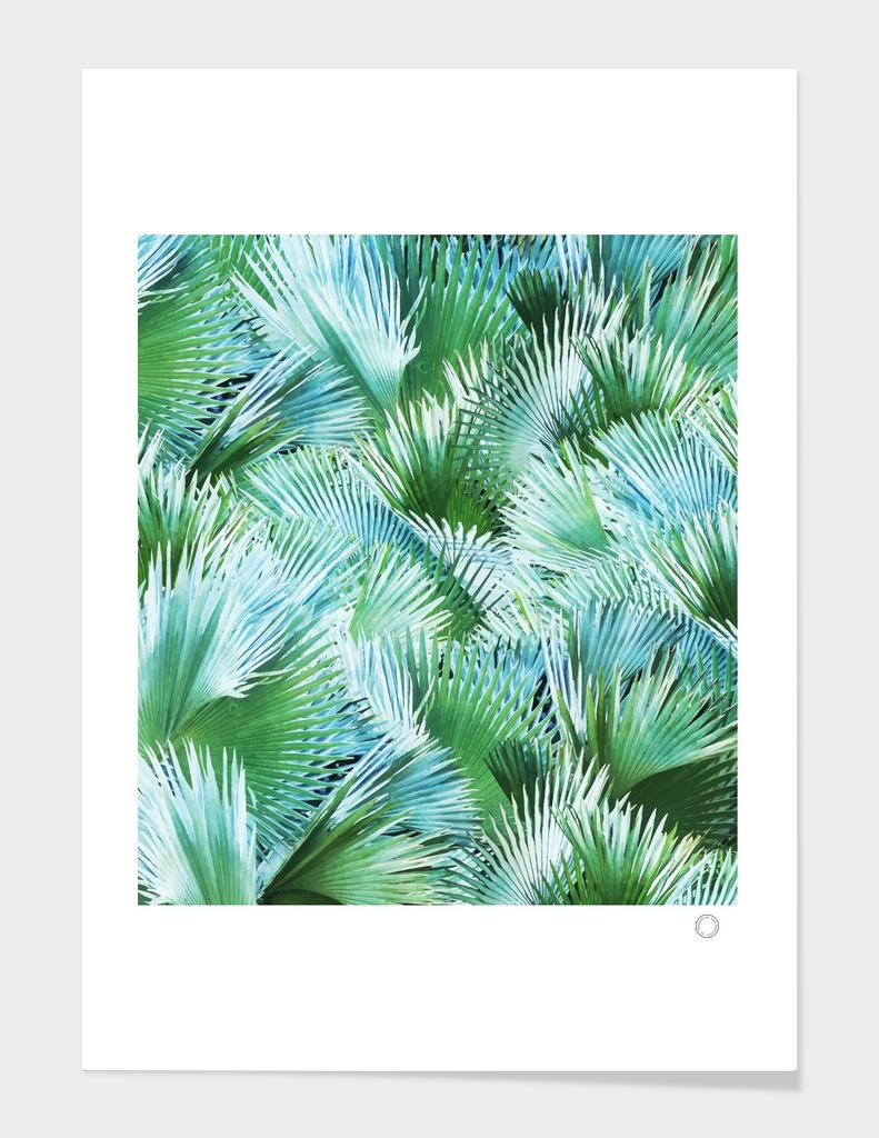 Palm Dreamer