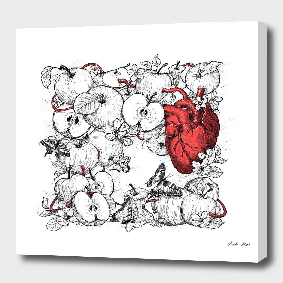 coronary apples