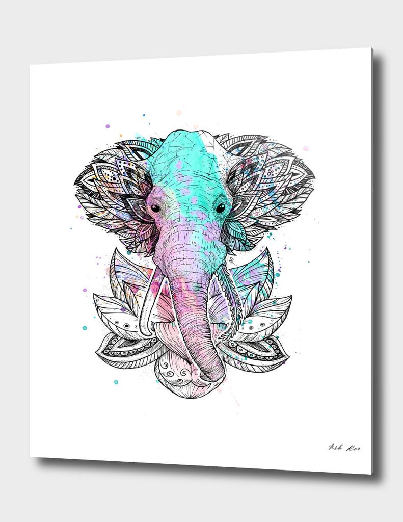elephant in the lotus