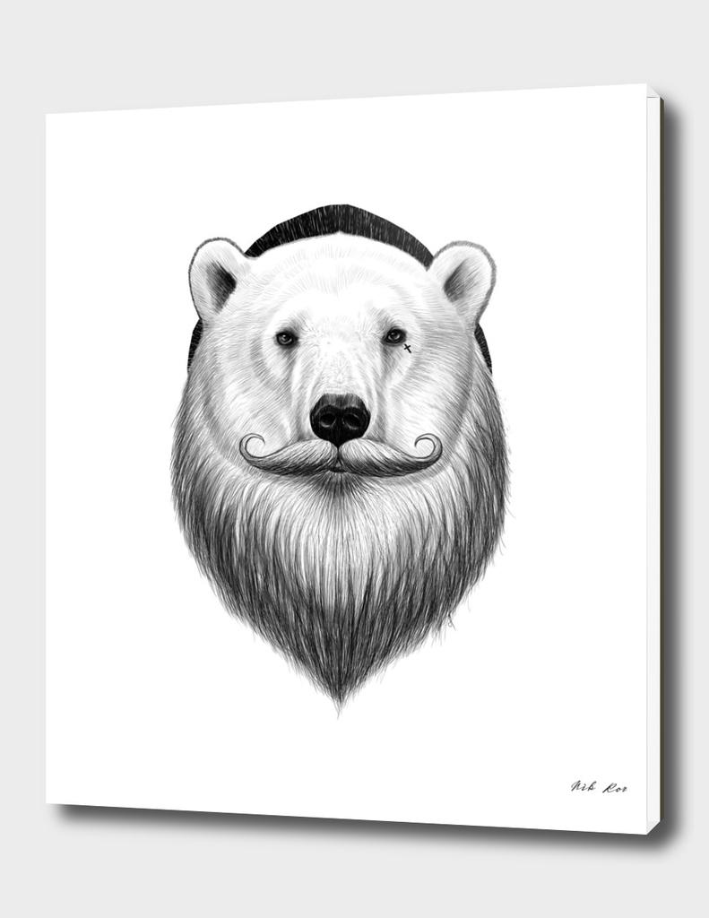 bearded polar bear