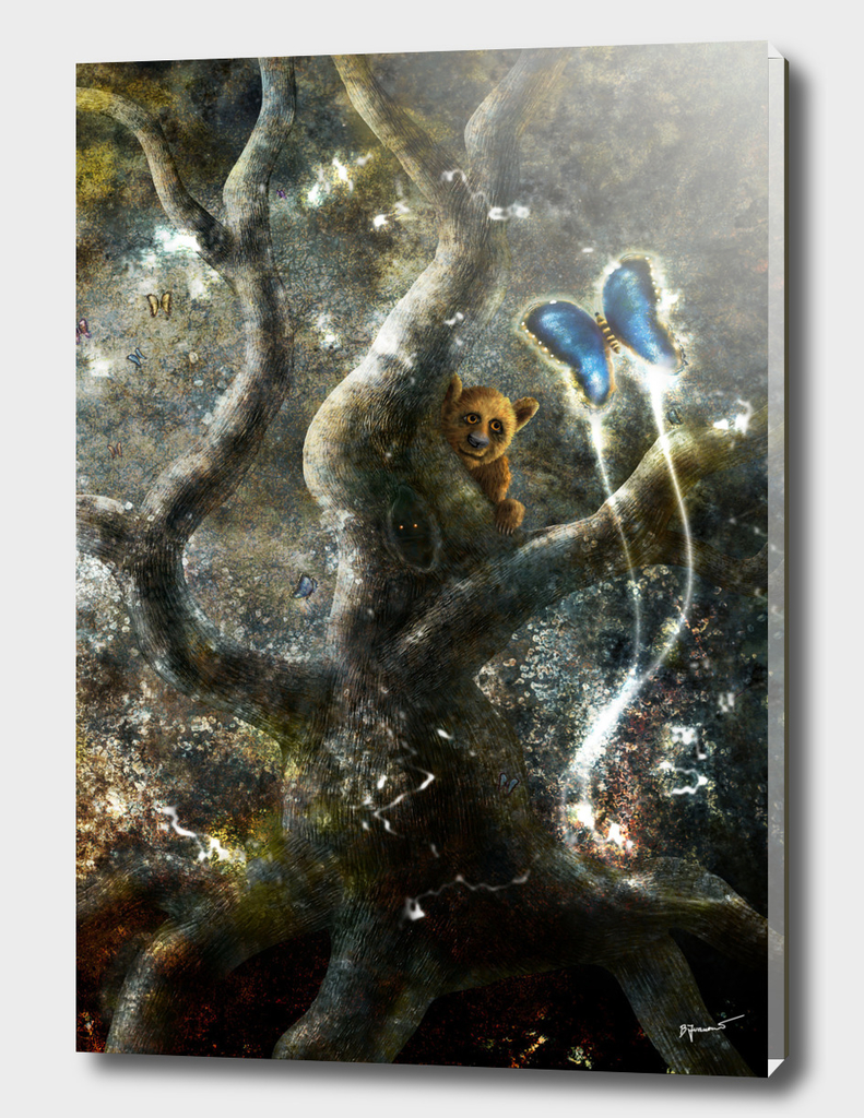 Spirit Of Forest - Encounter