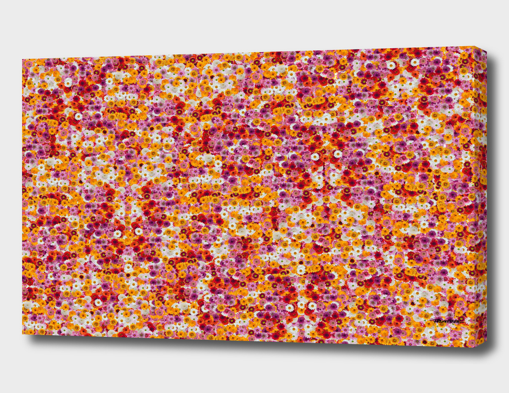 Flower-Power-Pattern