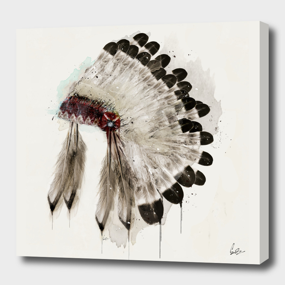 the native headdress