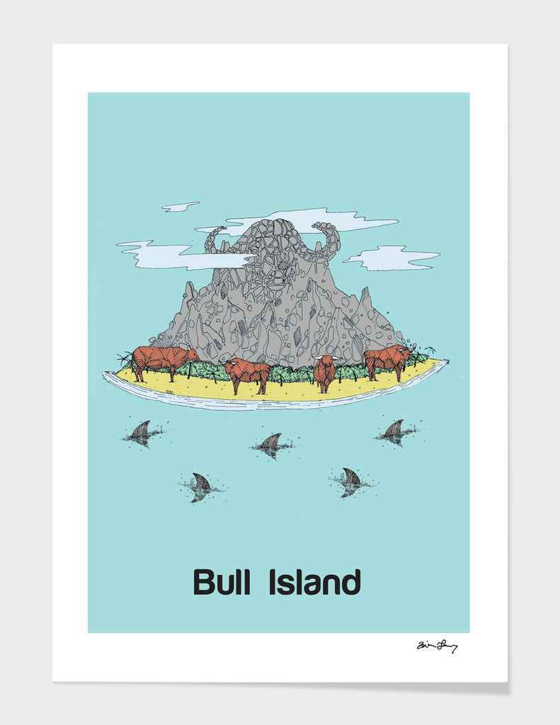Bull Island