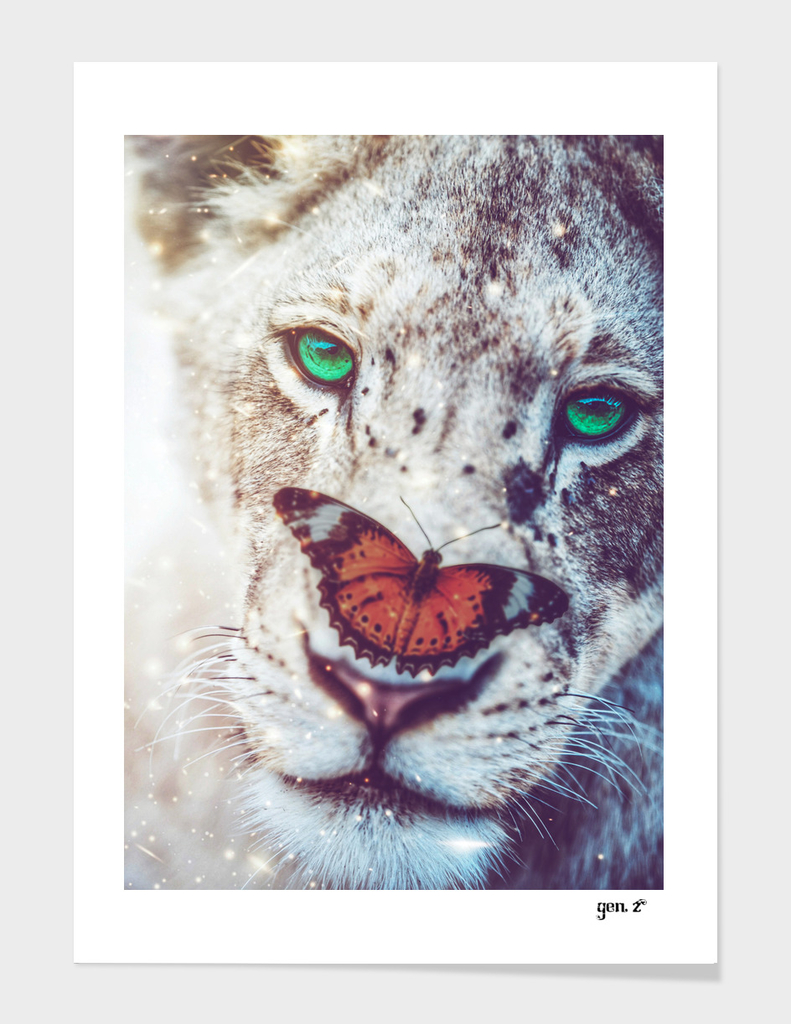 Lioness and orange butterfly