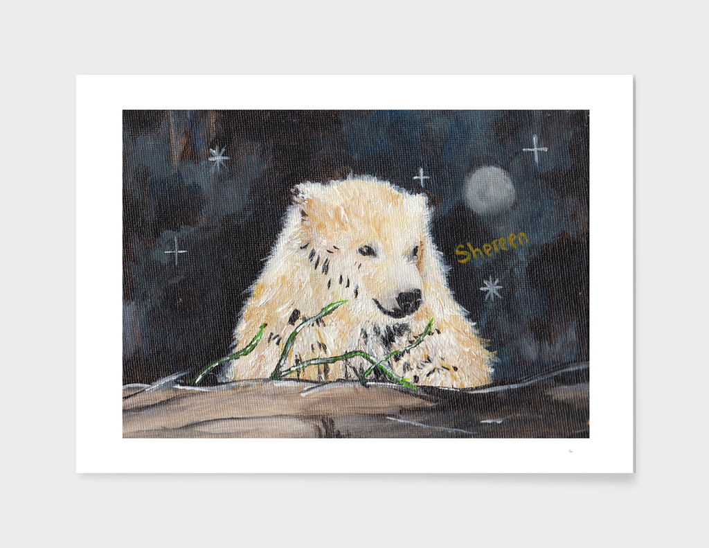 Polar Bear (night hunt)