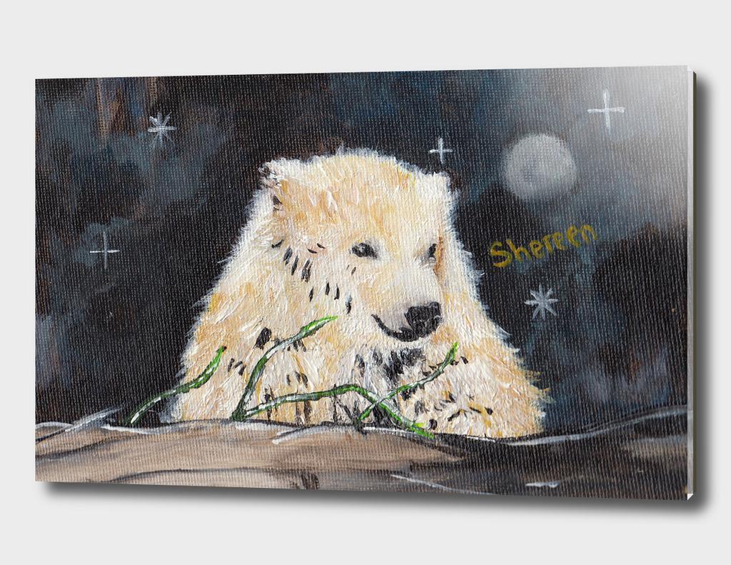 Polar Bear (night hunt)