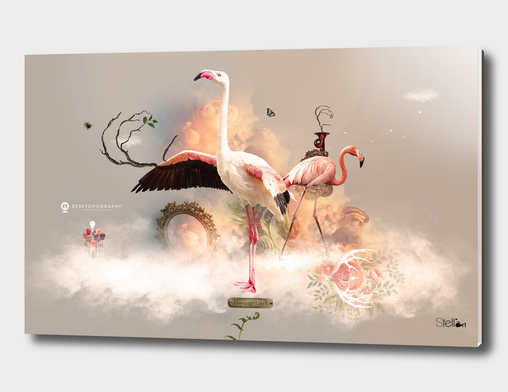 Flamingo Land