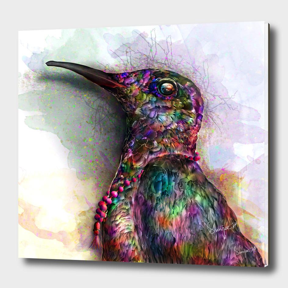 Bird of Colors