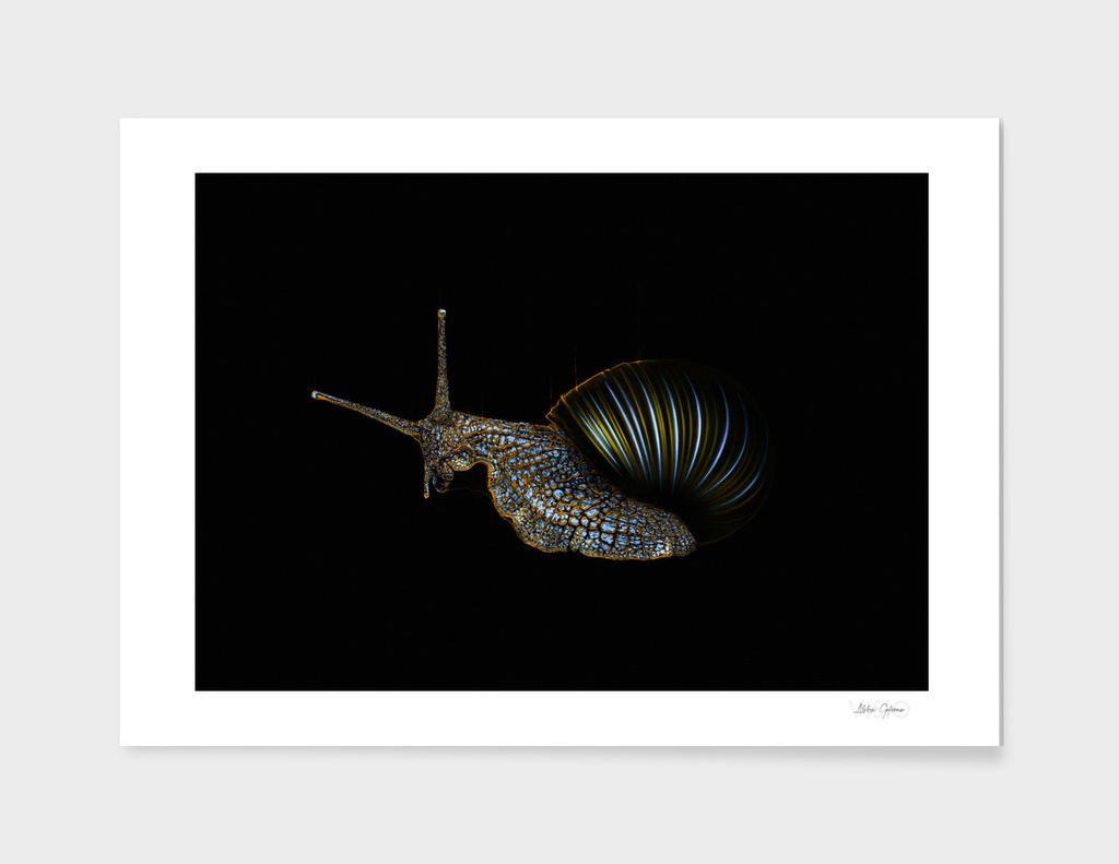 Neon Snail 2