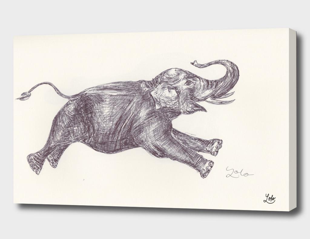 Elephant_600_4