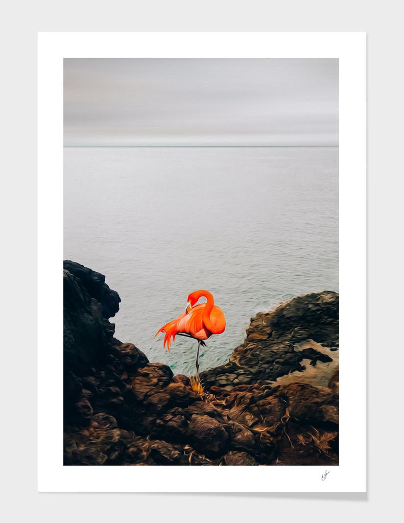 Flamingos on a rocky shore.