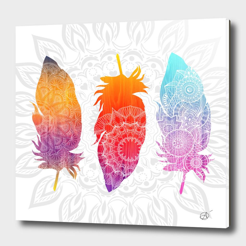 Feathers II