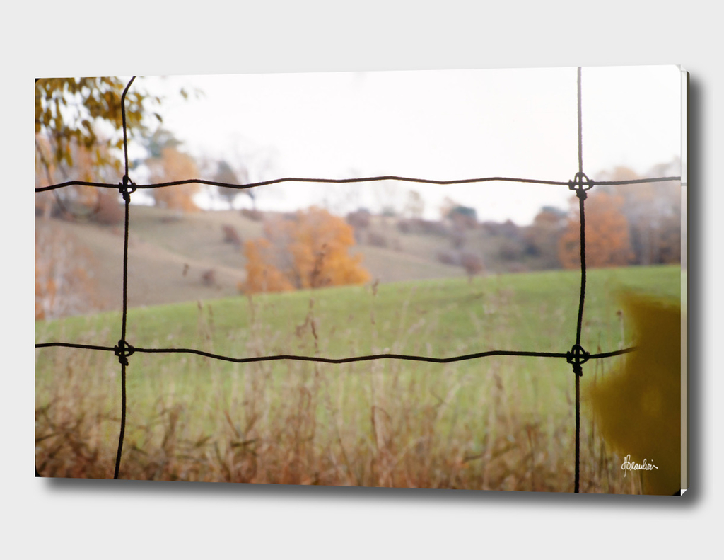 197709 Fence Shot, fields STRAIGHT