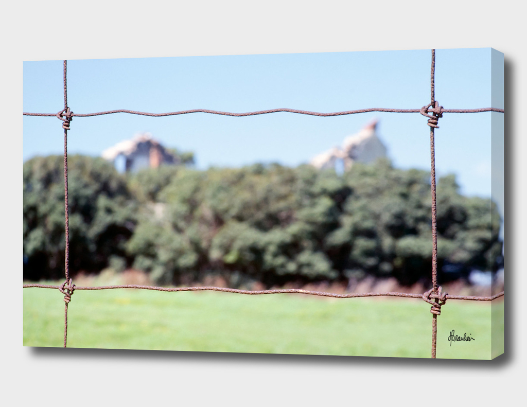 19770804 Fence shot, House in trees STRAIGHT