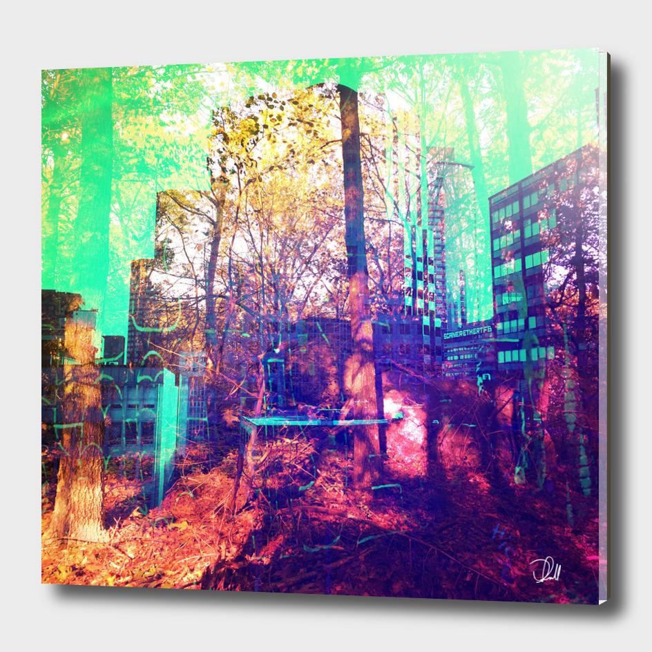 Urban Forest