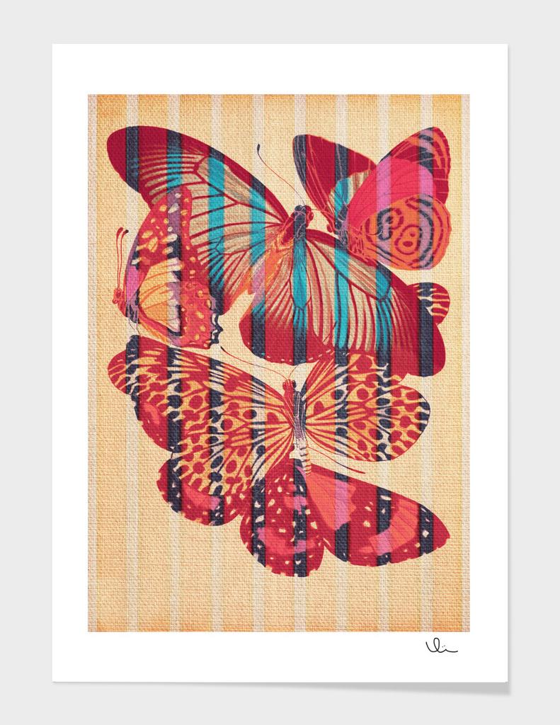 Butterflies in Strips