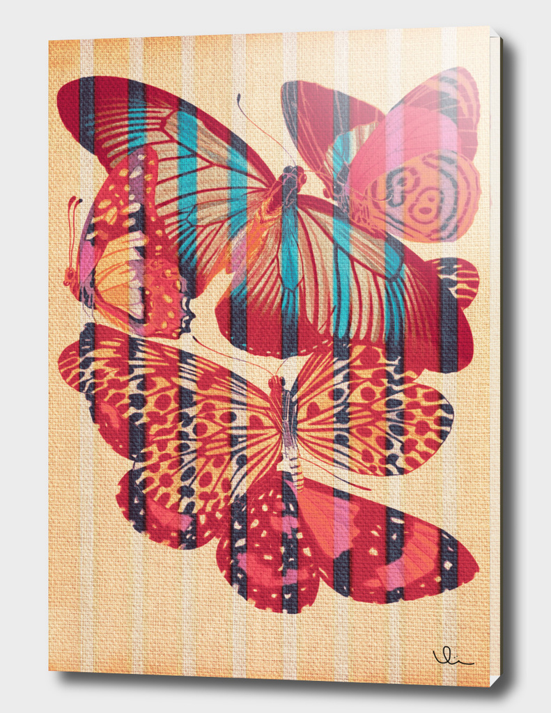Butterflies in Strips
