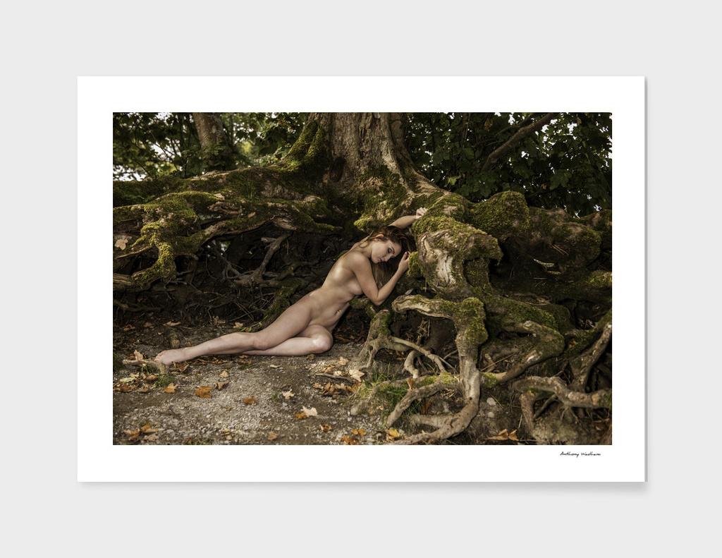 Rachelle's Roots