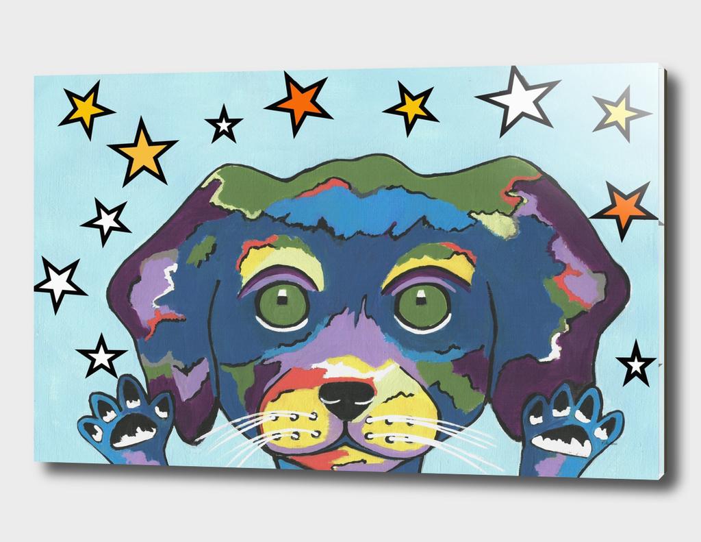 Pet Store Puppy - Pick Me