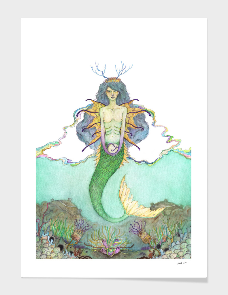 Last Mermaid