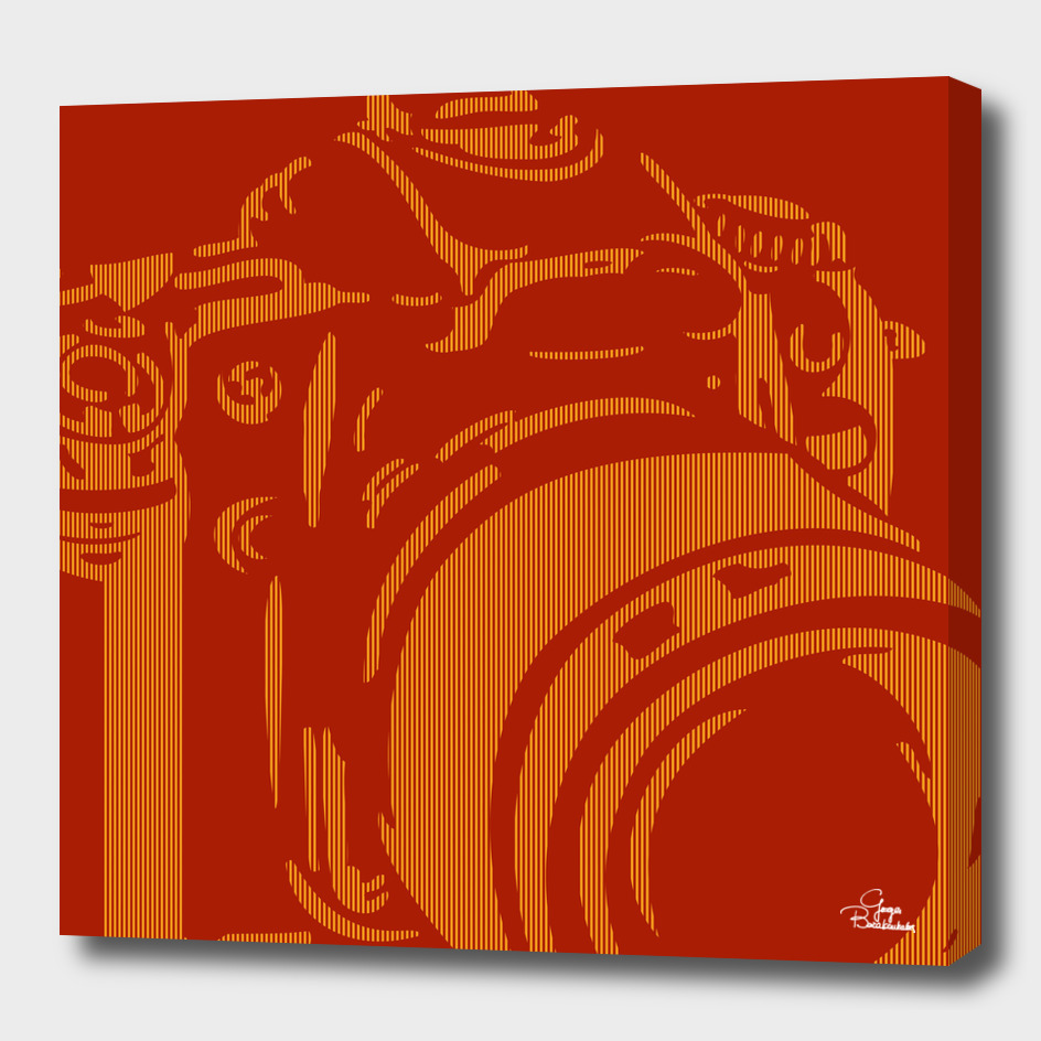 Camera Lines