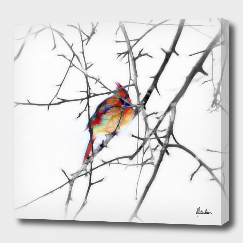 150101B Female cardinal
