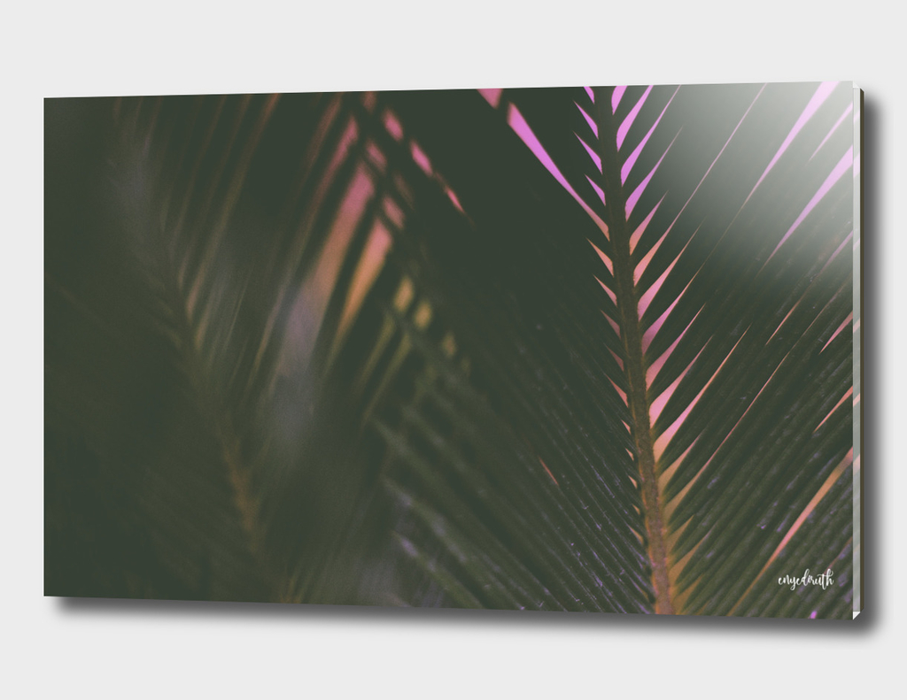 / i palm you /