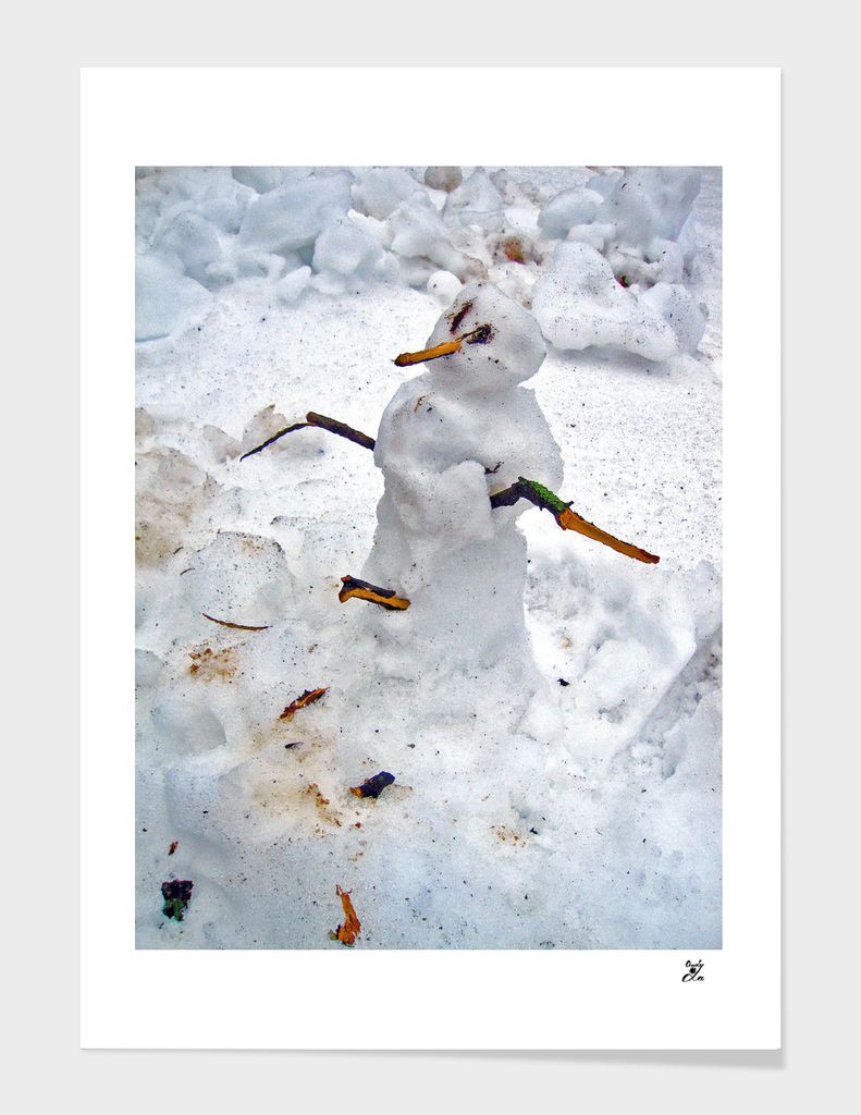 Real Snowman.