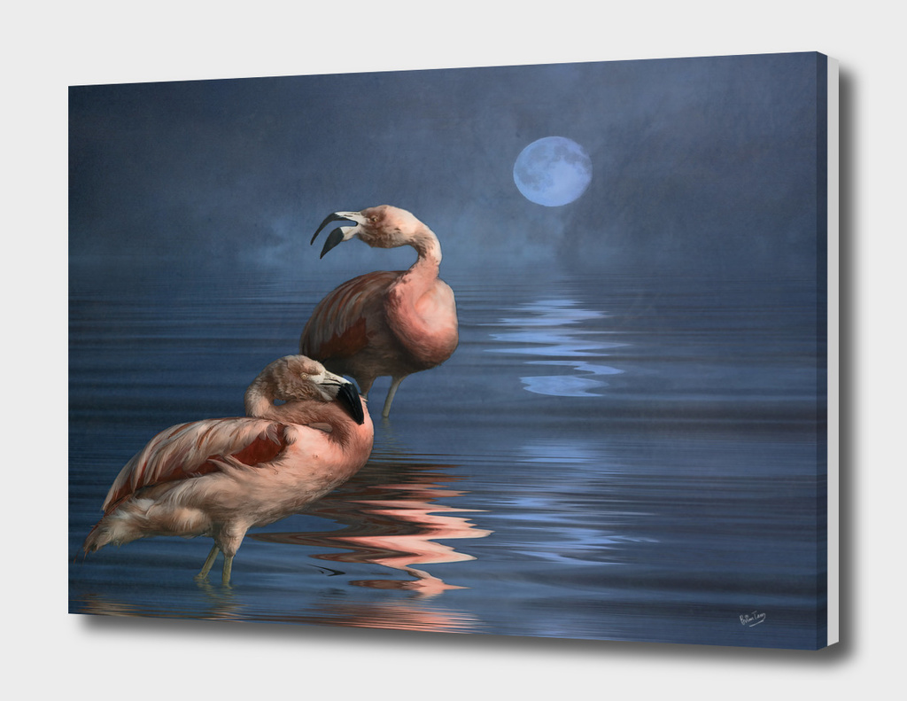 Flamingo Moon
