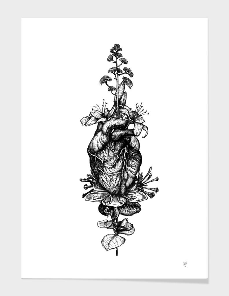 In Bloom-HEART