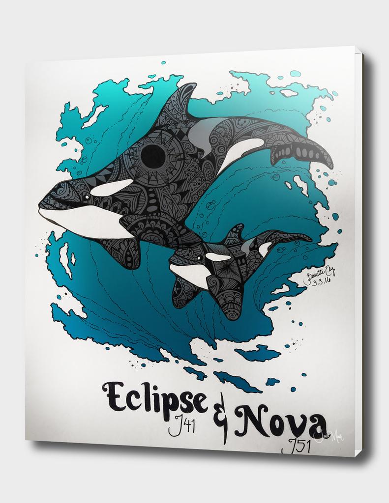 Eclipse and Nova