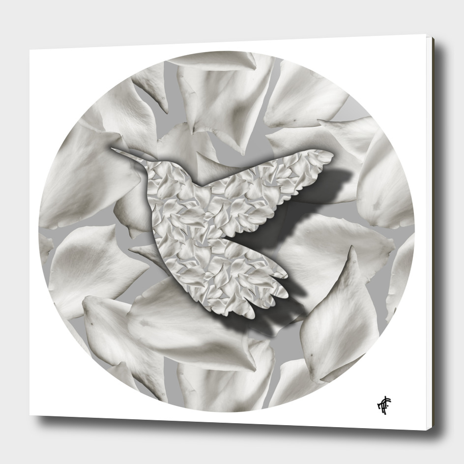 Hummingbird on Floral Silver